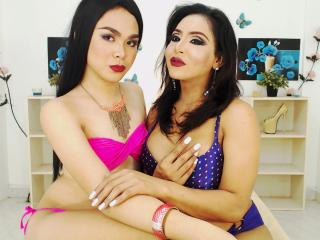 Photo de profil sexy du modèle TwoTransMistresses, pour un live show webcam très hot !